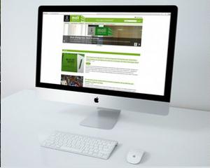 pagina web professional a mida atotarreu